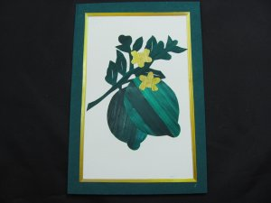 (FRT 05)  Wheat Straw Limes Handmade Greeting Card