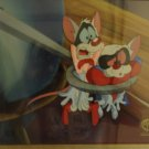 Pinky and the brain original production cel signed and matching production drawing