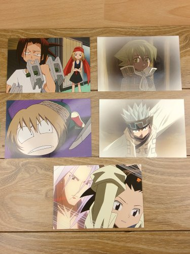 Japanese Anime Jump Shaman King Card x5 pages M004