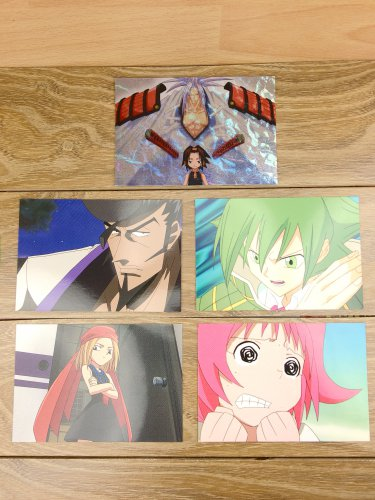 Japanese Anime Jump Shaman King Card x5 pages M011