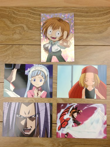 Japanese Anime Jump Shaman King Card x5 pages M020