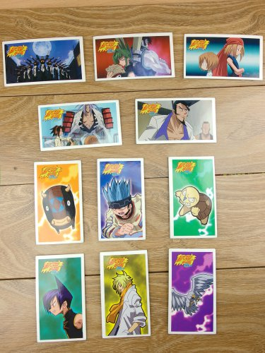 Japanese TOMY Shaman King Menko Megamen Card x11 pages N007