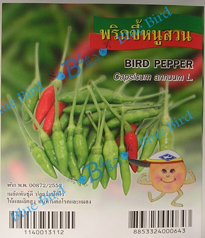 100 Seeds Thai Bird Pepper - Hot Pepper  : Vegetable Seed w S&H Free