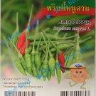 100 Seeds Thai Bird Pepper - Hot Pepper  : Vegetable Seed w S&H Free