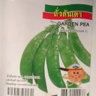 Garden Pea - Vegetable Seeds