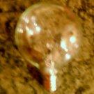 25 watt Type G bulb