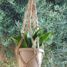 Macrame Plant Hanger JUTE 24 in All NATURAL (3-PLY)