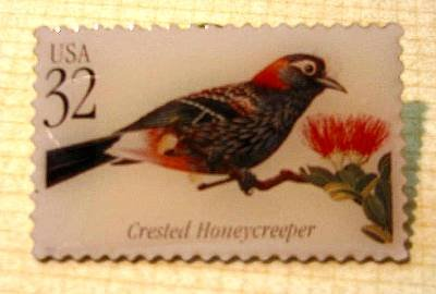 Crested Honeycreeper Tropical Bird stamp pin lapel 3224