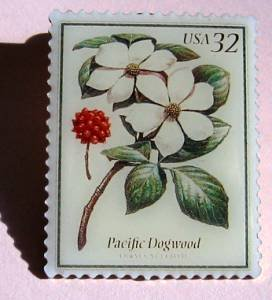 Pacific Dogwood Flowers lapel pins hat stamp pin 3197