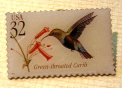 Green-throated Carib Tropical Bird stamp pin hat 3223