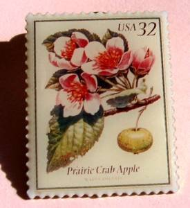 Prairie Crab Apple Flowering Trees Stamp Pin lapel 3196
