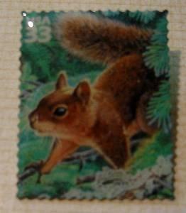 Douglas Squirrel lichen stamp pin lapel pins hat 3378i