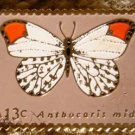 Orange-tip butterfly stamp pin lapel pins hat 1715