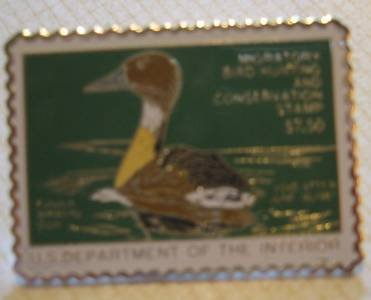 Fulvous Whistling duck stamp pins lapel pin hat rw53 S
