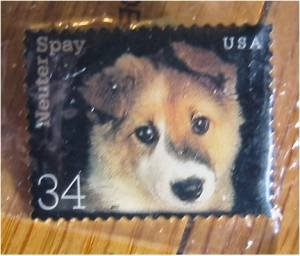 3671 Dog Puppy Neuter Spay Stamp pin lapel hat error S