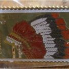 Comanche Indian Headdress stamp pin lapel pins 2503 S
