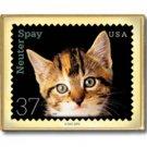 Kitten Cat Neuter Spay metal stamp pin lapel pins 3670 S