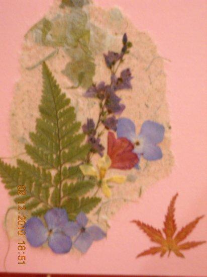 Hydrangea~maple leaf card