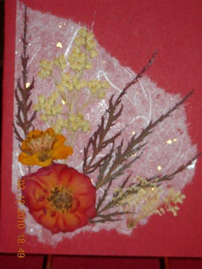 Rose Pressed Flower Card