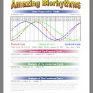Amazing Biorhythms - Charting your Life's cycle