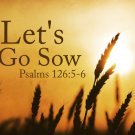 Let's Go Sow Graphic Set