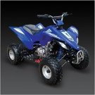 Tao Tao 250cc Atv Water cooled Free shipping