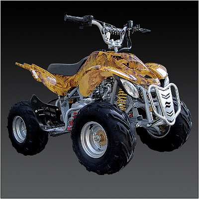 Brand New 110cc 4-stroke FULLY Automatic ATV 4 WHEELER  Free Shipping