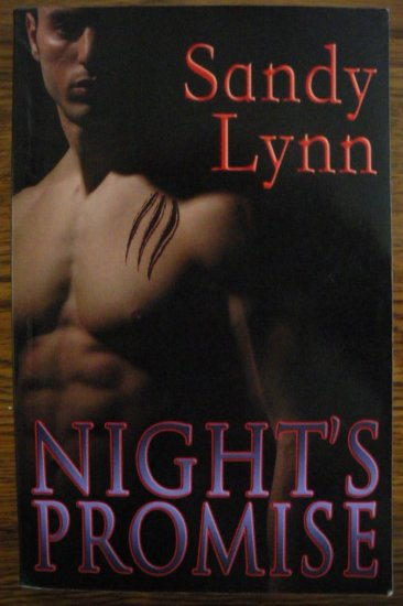NIGHT'S PROMISE by Sandy Lynn