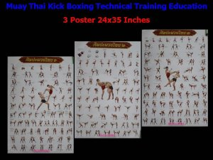 Muay Thai Kick Boxing Technical Training Education 3 Posters 24x35 Inches