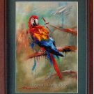 Original Oil Painting On Canvas Animal The Parrot