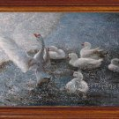 Original Oil Painting Animal Goose Playing Water Art