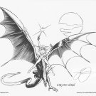 Signed Steve Woron DRAGONRIDER Fantasy Art + free 4 BIN