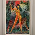 BETTY PAGE 4 Card Compilation by SIGNED Don Paresi and Steve Woron in HOLDER