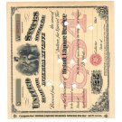 United States Stamp for IRS 1884! M46521