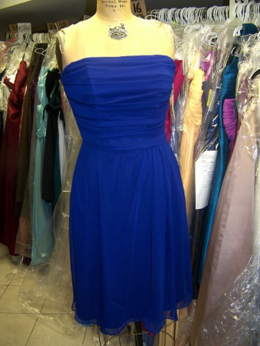 Lela Rose 143....Strapless, Cocktail length, Chiffon dress....Royal......Size 16