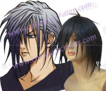 Kingdom Hearts Zexion cosplay wig