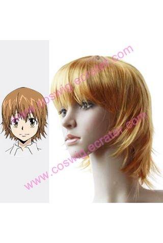 Reborn Kyoko Sasagawa   Halloween  Cosplay Wig