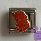 Irish Setter Dog Italian Charm