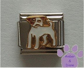 Jack Russell Terrier Dog Italian Charm full body facing left