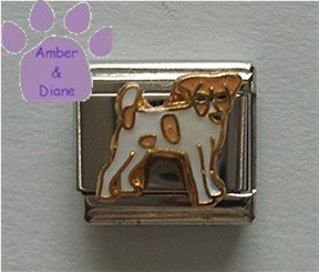 Jack Russell Terrier Dog Italian Charm full body facing right