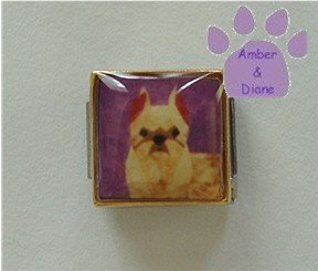 Brussells Griffon Dog 9mm Custom Photo Italian Charm