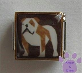 English Bull Dog 9mm Custom Photo Italian Charm