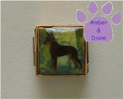Mini Pin or Doberman Dog 9mm Custom Photo Italian Charm