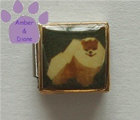 Pomeranian Dog 9mm Custom Photo Italian Charm