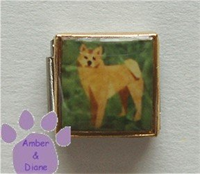 Shiba Inu Dog 9mm Custom Photo Italian Charm full body pose