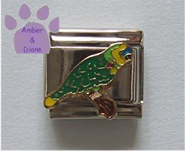 Blue Front Amazon Parrot Italian Charm for the bird or parrot lo