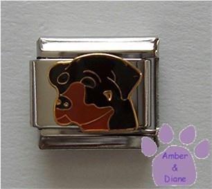Black and Tan Rottweiler Dog Italian Charm