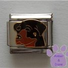 Black and Tan Rottweiler Dog Italian Charm