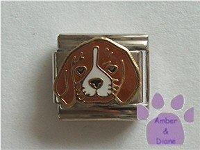Cute Beagle Puppy Dog Italian Charm