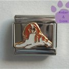 King Charles Cavalier Spaniel Dog Italian Charm Brown and White